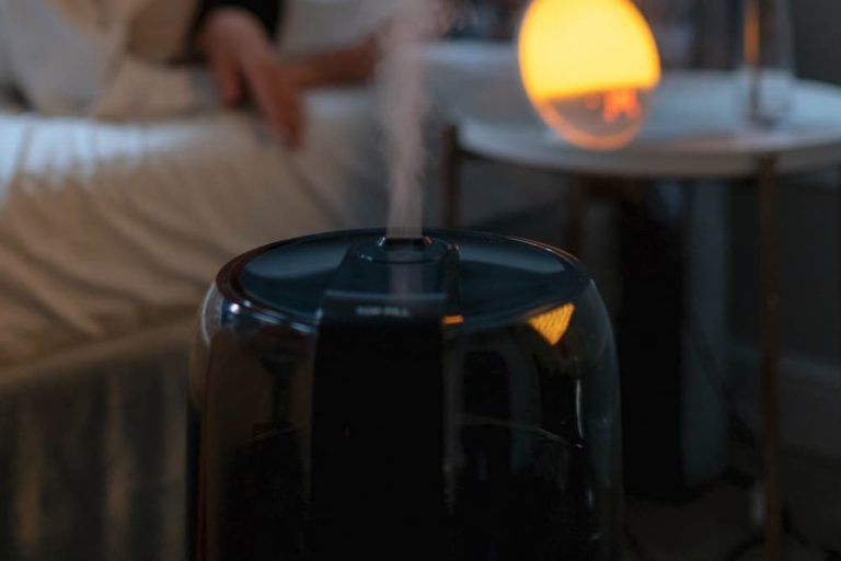 Can You Use Humidifier Without Filter?