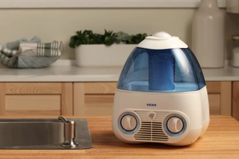 What To Put In Humidifier To Prevent Mold?